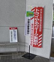 try001.JPG