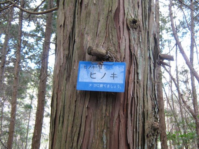 10.ashiya.jpg