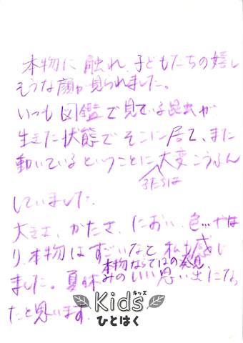 mushi_comment_4.jpg
