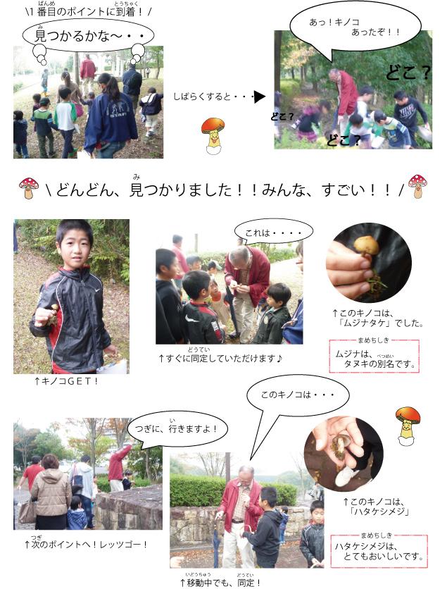 kinoko-tori.jpg