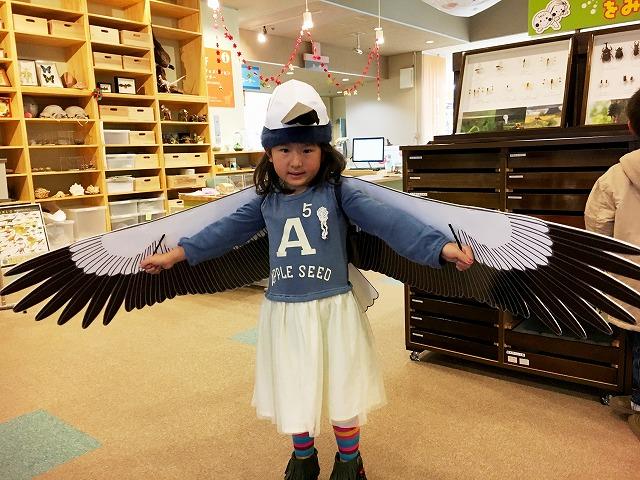 http://www.hitohaku.jp/blog/2016/12/s-IMG_8684.jpg