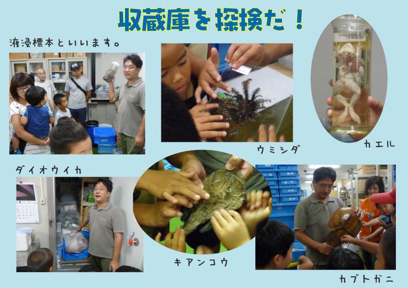 http://www.hitohaku.jp/blog/2017/08/8gatutannkenn.jpg