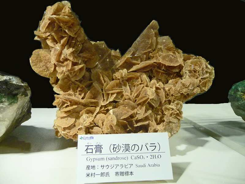 http://www.hitohaku.jp/blog/2018/07/26/P1190285.jpg