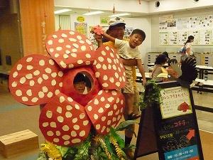 http://www.hitohaku.jp/blog/2018/08/30/201808/P1210044.jpg