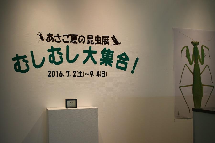 http://www.hitohaku.jp/blog/3_IMG_6257.jpg