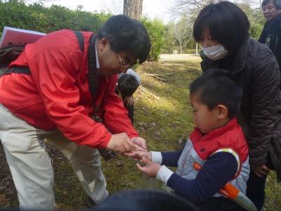 http://www.hitohaku.jp/blog/5%20nekkono%20kansatsu%20s-P1120544.jpg