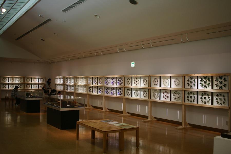 http://www.hitohaku.jp/blog/6_IMG_6245.jpg