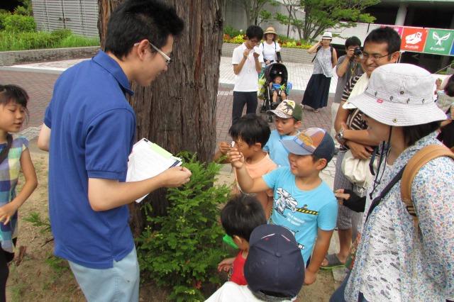 http://www.hitohaku.jp/blog/7s-IMG_0518.jpg