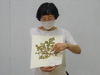 https://www.hitohaku.jp/blog/DSC05332.jpg