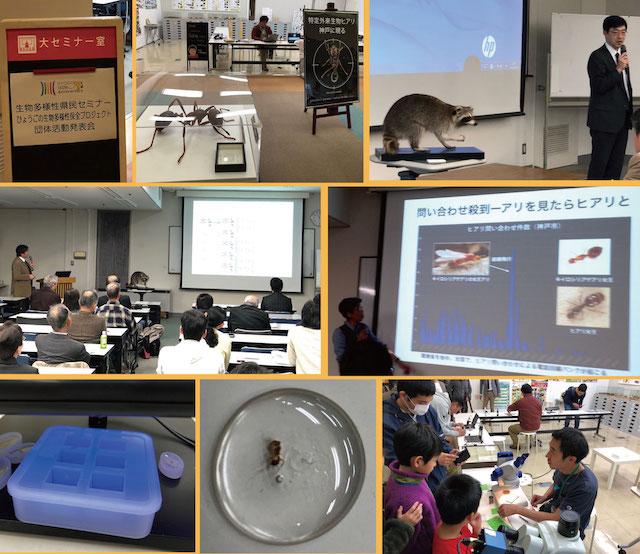 http://www.hitohaku.jp/blog/HY181125.jpg