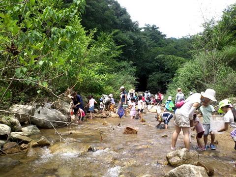 ashiyagawa2012_1.jpg