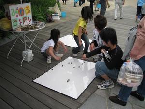 biwa.JPGのサムネール画像