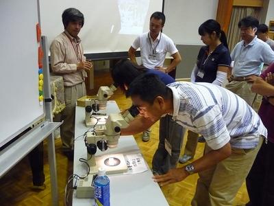 顕微鏡で微化石の観察