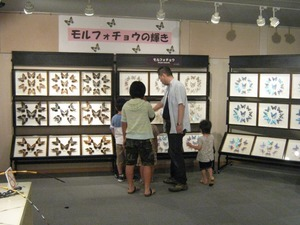 katoshi-opening (7).jpg