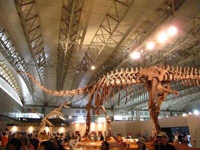 マメンキサウルス