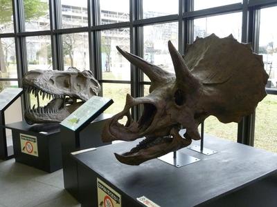 エントランスホールの恐竜