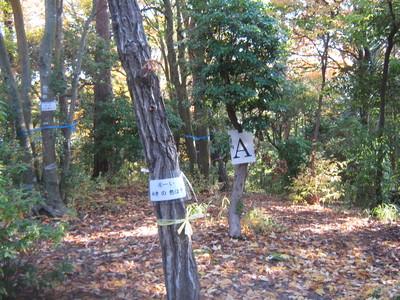 YAMAGUCHI (2).jpg