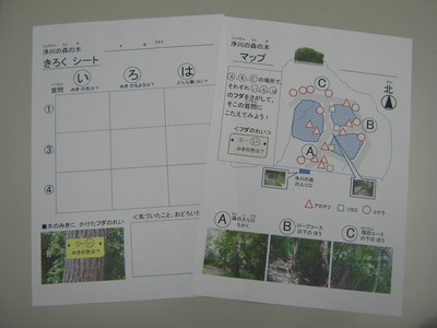 YAMAGUCHI (3).jpg