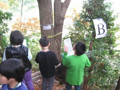 s-YAMAGUCHI (13).jpg