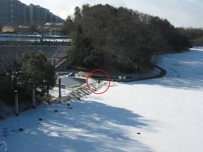 kouenhidari.jpg
