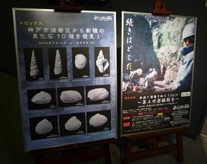 3階展示室「丹波の恐竜」コーナー」