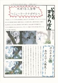 myura.jpg