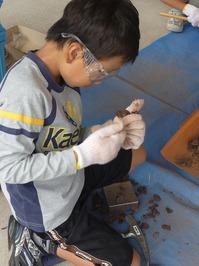 化石発掘体験02