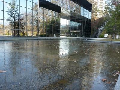 北側の池の氷