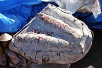 岩盤から取り外されたプラスタージャケット