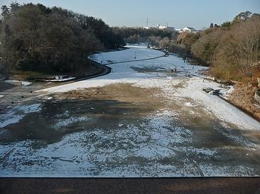 まだ雪が残る深田公園