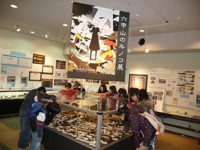 六甲山のキノコ展