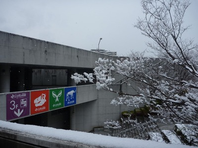 3階入口の雪
