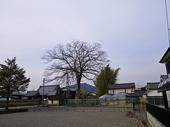 sasayama10re800.JPG