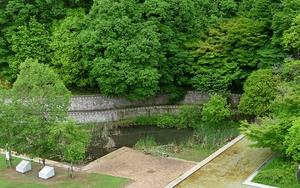 池がキレイになりました!!