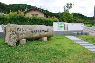 県立丹波並木道中央公園入口