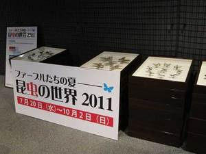 hyohon_1498.jpg
