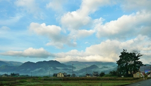 朝霧に覆われた山々
