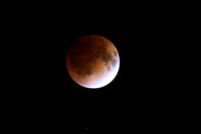 月表面の模様