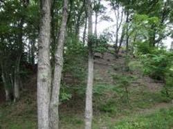 ひとはくの里山のサムネール画像