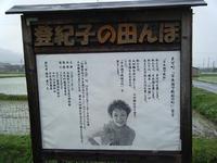 登紀子の田んぼ