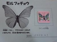 s-IMGP0626().jpg