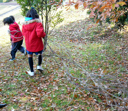 activity_camp_MMitani05Dec.jpg