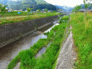 wakaigawa2014_1.jpg