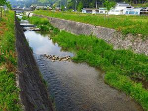 wakaigawa2014_2.jpg