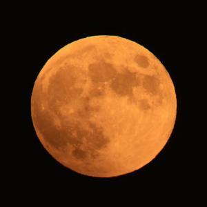 オレンジ色の月が昇りました