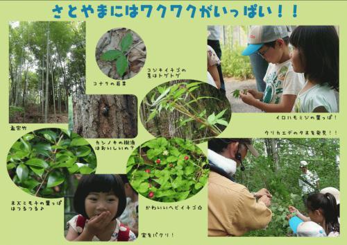 http://www.hitohaku.jp/blog/assets_c/2018/05/satoyama-thumb-500xauto-18930.jpg