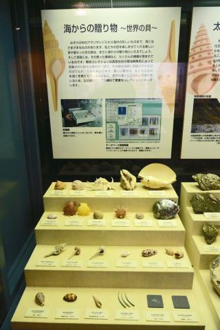 http://www.hitohaku.jp/blog/assets_c/2018/07/P1190890-thumb-autox480-19329.jpg