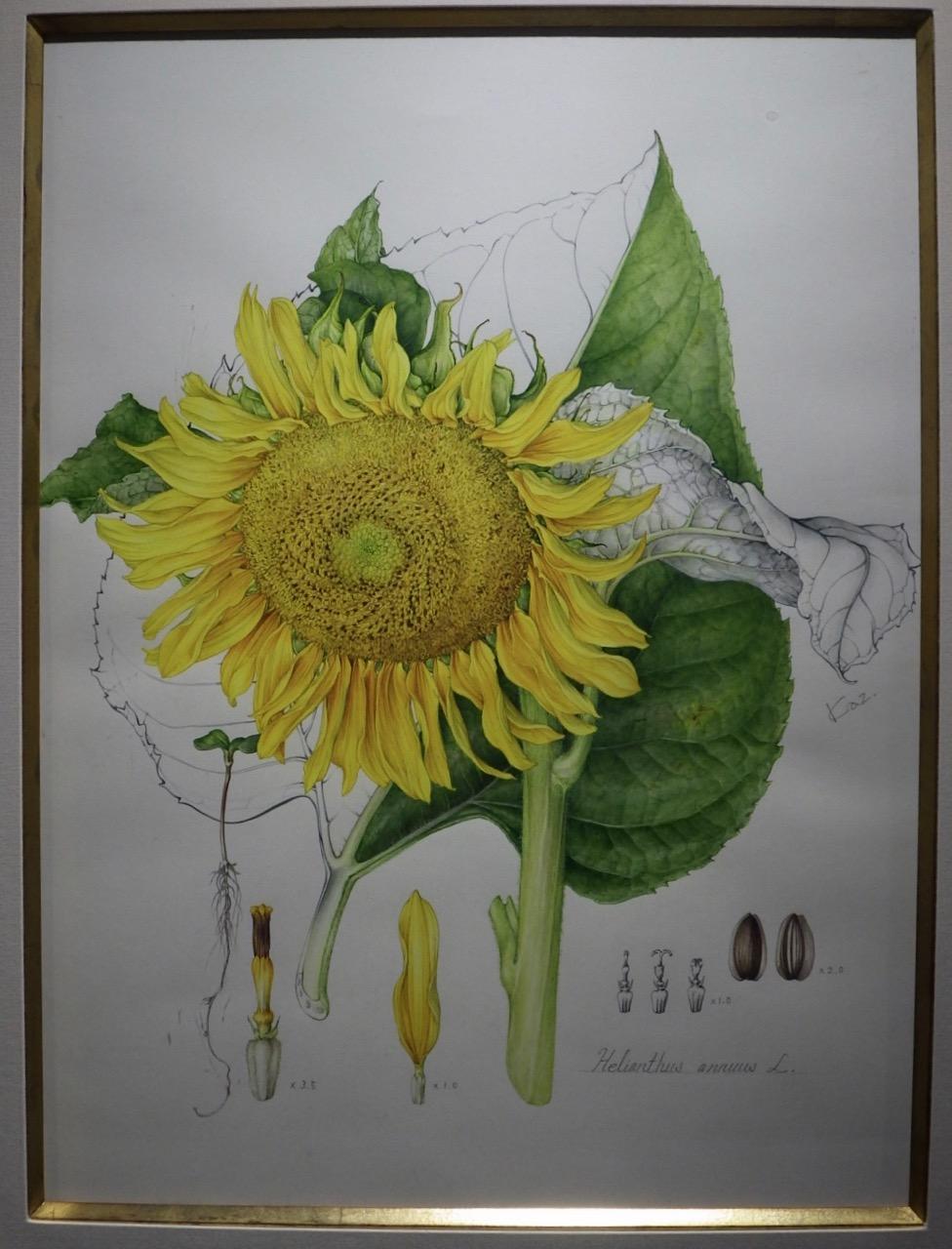 https://www.hitohaku.jp/blog/db4956aef046c0f55437bc128446492ab86560b1.jpg