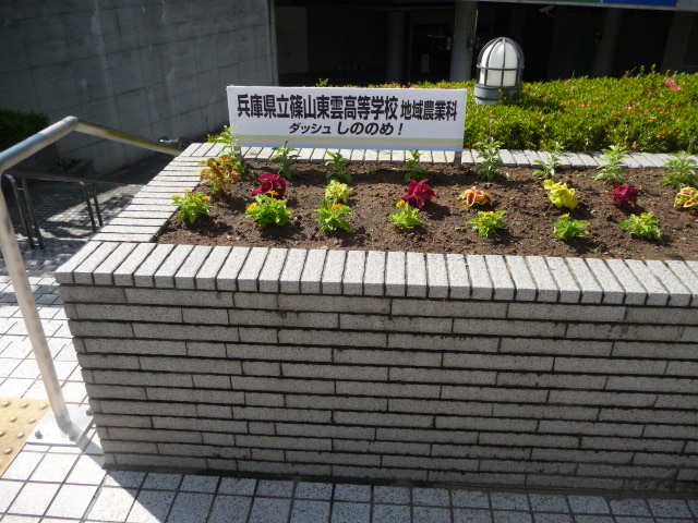 http://www.hitohaku.jp/blog/folder241/P1030823.JPG
