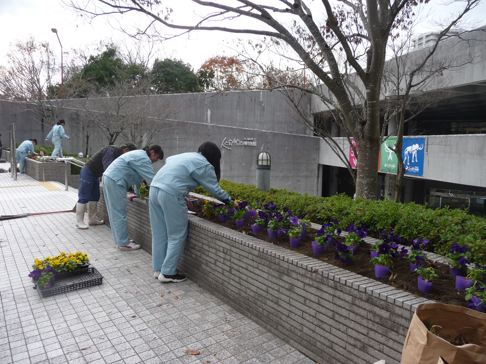 http://www.hitohaku.jp/blog/folder241/P1040746.JPG